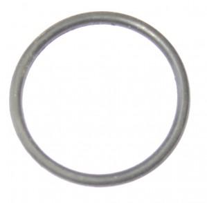 O-Ring  Elektrische WP  Davies Craig EWP80
