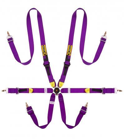 Beltenick® 6-Punkt Gurt Tourenwagen (HANS)  Farbe: purple